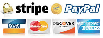 secure online payments paypal and stripe